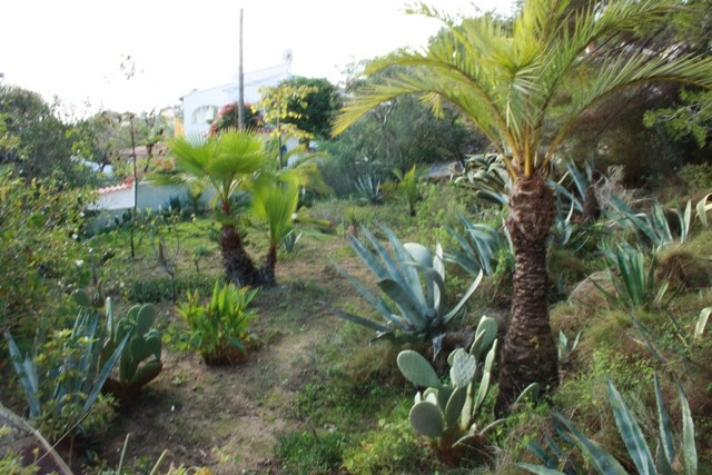 Benissa Coastal Land For Sale - €155,000