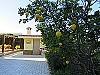 Lemon trees  - 4 bed 1 bath Villa Vilamarchante