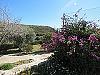 Garden  - 3 bed 1 bath Pedralba