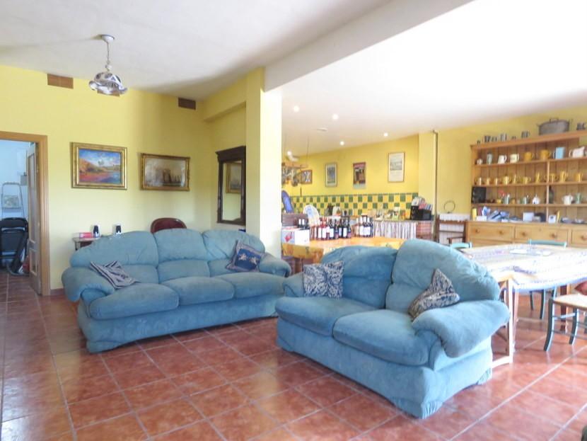 Downstairs living room  - 5 bedroom 2 bathroom villa Villamarchante