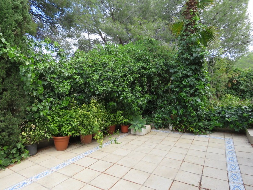 Paved area of garden  - 4 bed 2 bath Montserrat