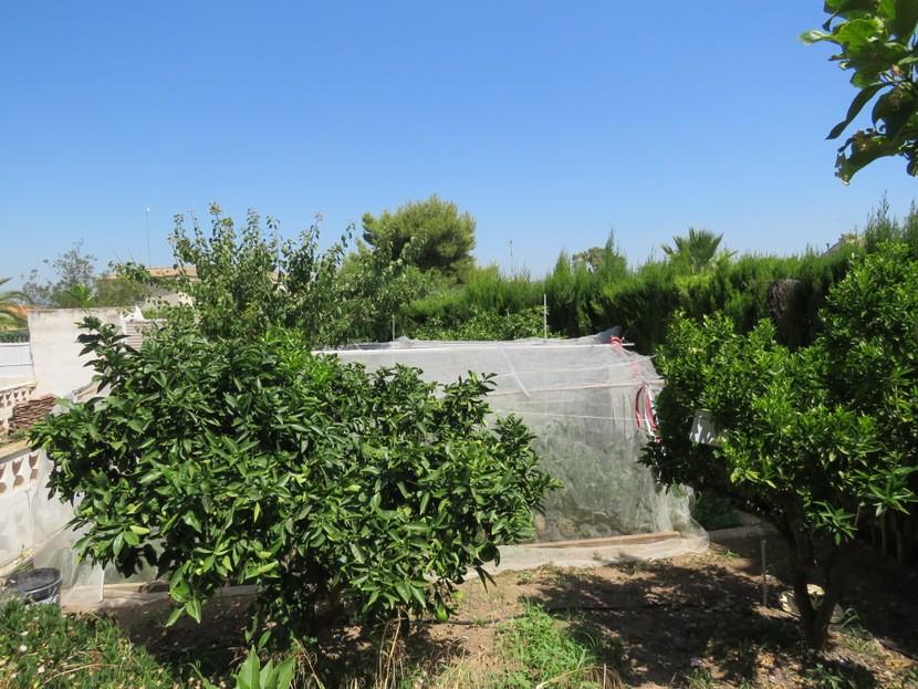 Garden - 6 bed 4 bath Lliria