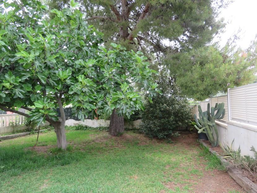 Garden  - 3 bed 1 bath Llíria